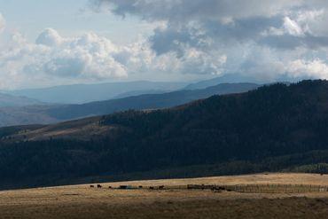 Photo of 1690 Derby Mesa Loop Burns, CO 80426 - Image 95