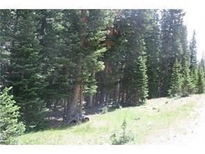150 SHORTY ROAD FAIRPLAY, Colorado 80440