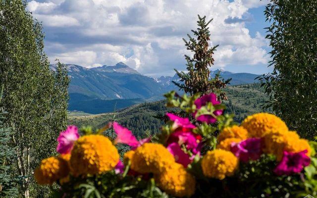 1372 Beard Creek Trail - photo 4