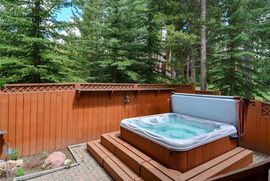 220 S Gold Flake TERRACE BRECKENRIDGE, Colorado 80424 - Image 22
