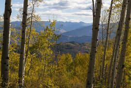 3483 Daybreak Ridge Avon, CO 81620 - Image 41