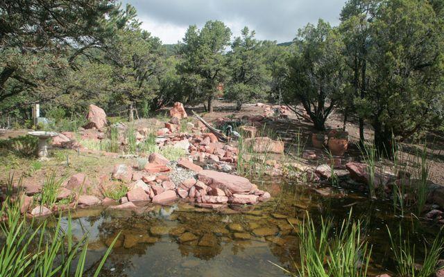 1255 Castle Peak Ranch Road - photo 9