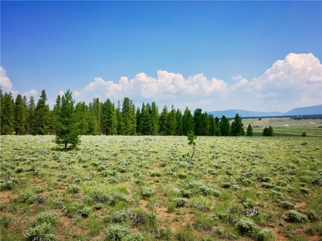 3 Elk Run LEADVILLE, Colorado 80461