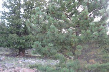 0 Bonell DRIVE FAIRPLAY, Colorado - Image 3