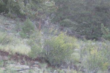 0 Bonell DRIVE FAIRPLAY, Colorado - Image 5