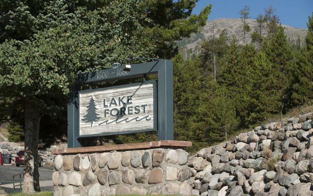 1660 Lakeview TERRACE # F204 FRISCO, Colorado 80443