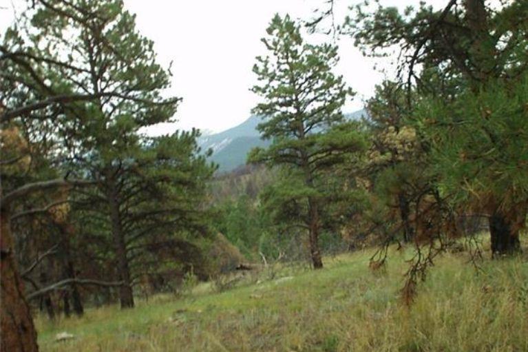14704 Wetterhorn Peak TRAIL OTHER, Colorado 80470