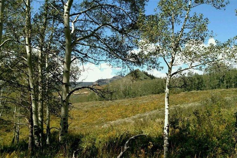 914 GCR 281 KREMMLING, Colorado 80459