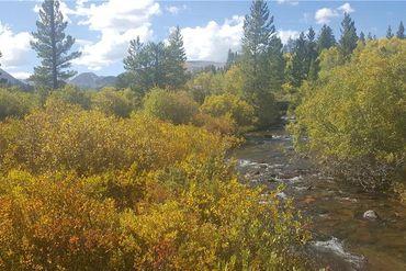 618 MOSQUITO PASS ROAD ALMA, Colorado - Image 13