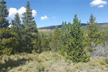 618 MOSQUITO PASS ROAD ALMA, Colorado - Image 14