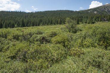 Photo of 106 McDill ROAD BRECKENRIDGE, Colorado 80424 - Image 17