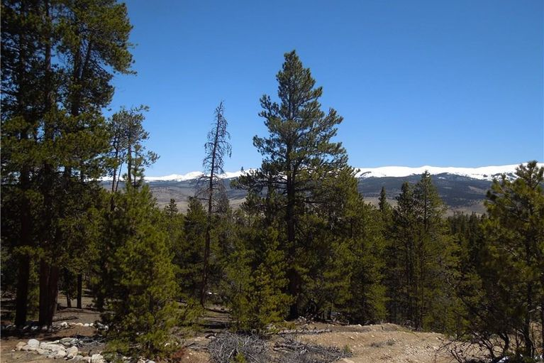 180 Lodgepole DRIVE TWIN LAKES, Colorado 81251