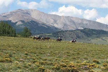 7 CR 7 COUNTY ROAD FAIRPLAY, Colorado - Image 4