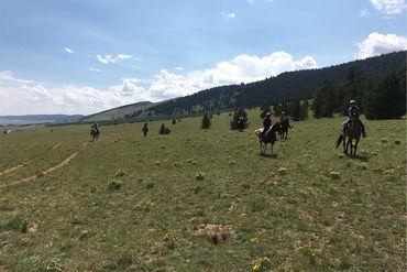 7 CR 7 COUNTY ROAD FAIRPLAY, Colorado - Image 6