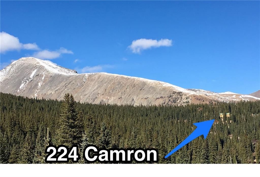224 Camron LANE BRECKENRIDGE, Colorado 80424