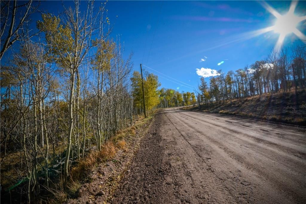 555 LITTLE BALDY CIRCLE FAIRPLAY, Colorado 80440