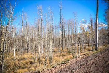 555 LITTLE BALDY CIRCLE FAIRPLAY, Colorado - Image 11