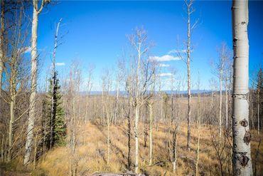 555 LITTLE BALDY CIRCLE FAIRPLAY, Colorado - Image 12