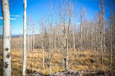 555 LITTLE BALDY CIRCLE FAIRPLAY, Colorado - Image 13