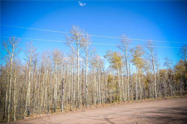 555 LITTLE BALDY CIRCLE FAIRPLAY, Colorado - Image 14
