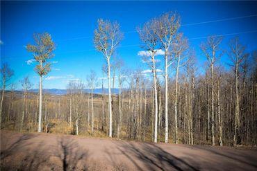 555 LITTLE BALDY CIRCLE FAIRPLAY, Colorado - Image 16