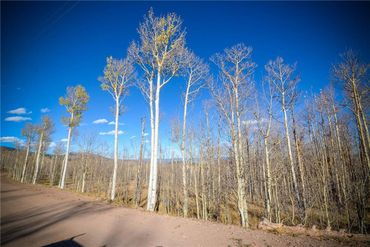 555 LITTLE BALDY CIRCLE FAIRPLAY, Colorado - Image 20