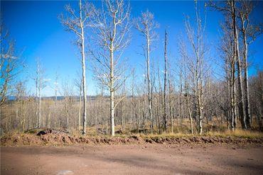 555 LITTLE BALDY CIRCLE FAIRPLAY, Colorado - Image 6