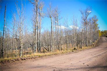 555 LITTLE BALDY CIRCLE FAIRPLAY, Colorado - Image 8