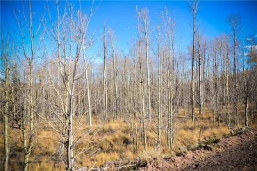555 LITTLE BALDY CIRCLE FAIRPLAY, Colorado - Image 10