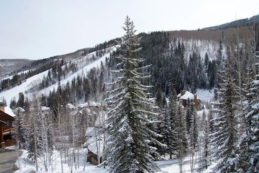 25 Elk Track Court Beaver Creek, CO - Image 14