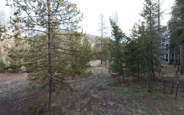 Pines At Keystone Condo # 2038 - photo 26