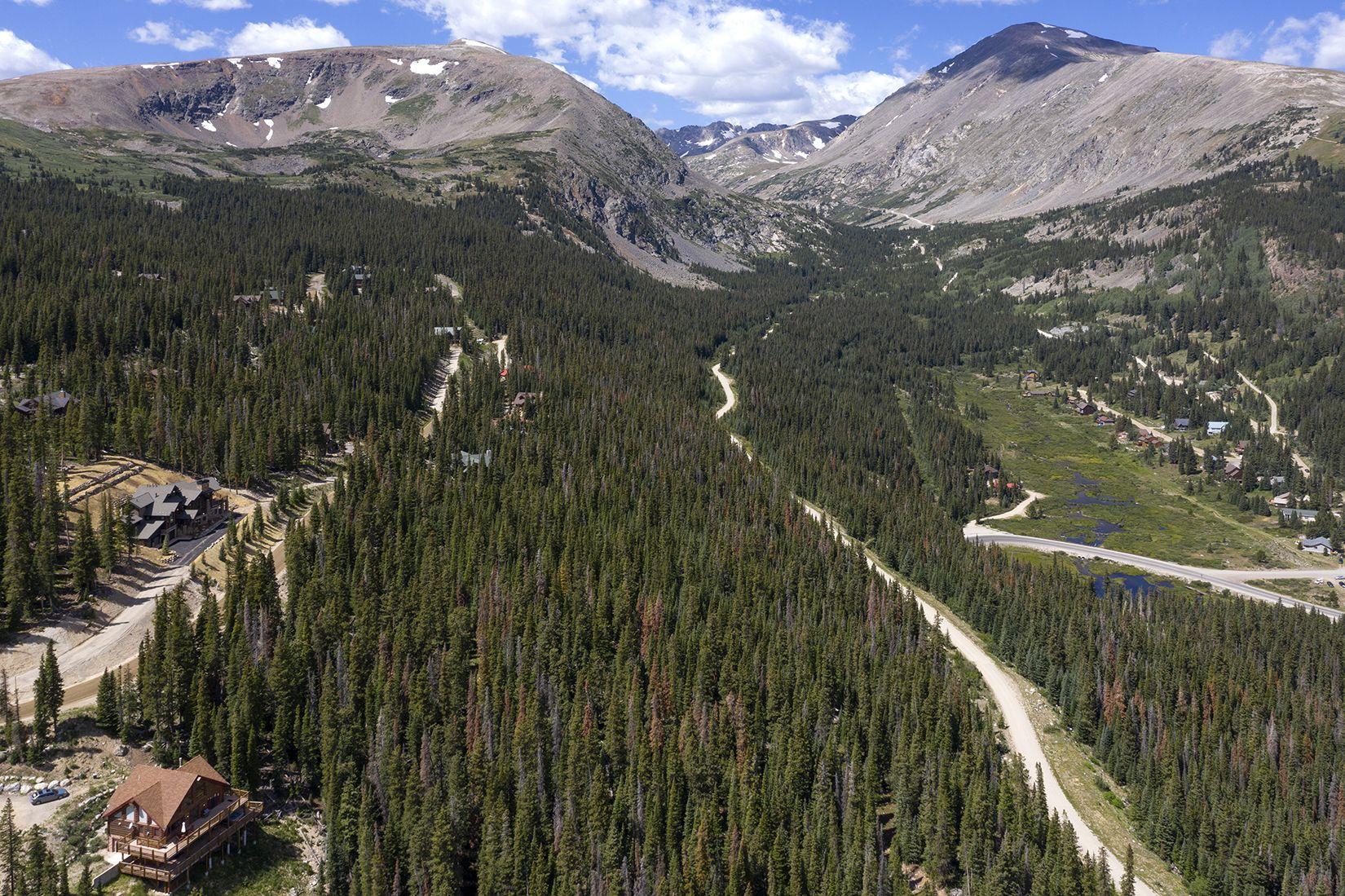 218 Quandary View DRIVE BRECKENRIDGE, Colorado 80424