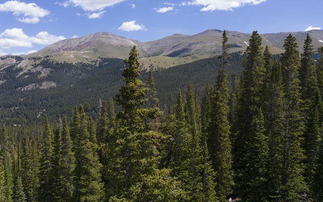 218 Quandary View Drive - photo 6
