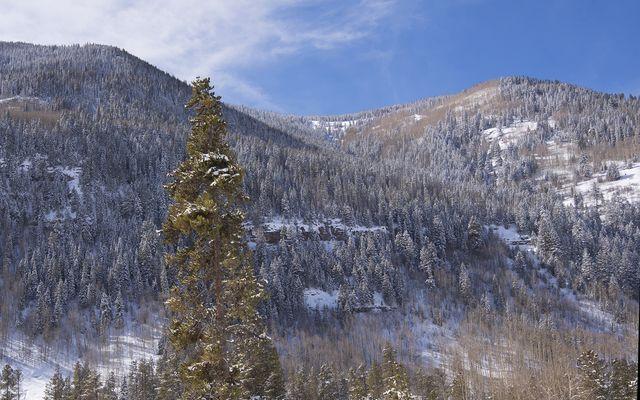 4145 Spruce Way #B - photo 5