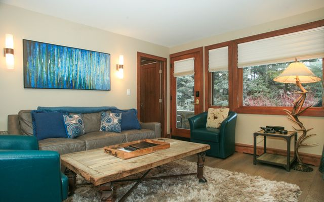 595 Vail Valley Drive # 167d - photo 6