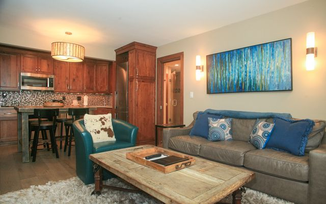 595 Vail Valley Drive # 167d - photo 8