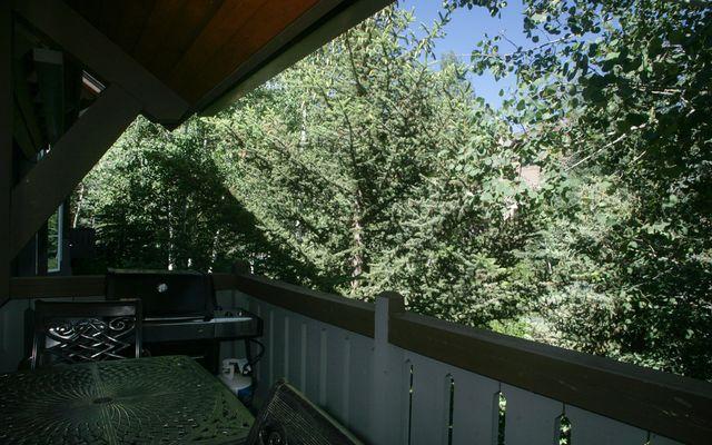 Spruce Tree Lodge # 305 - photo 13