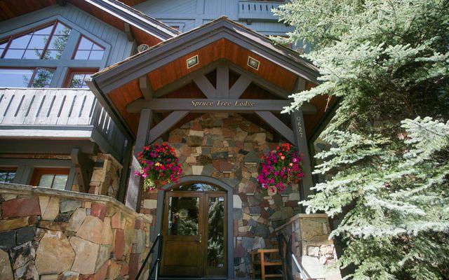 Spruce Tree Lodge # 305 - photo 15
