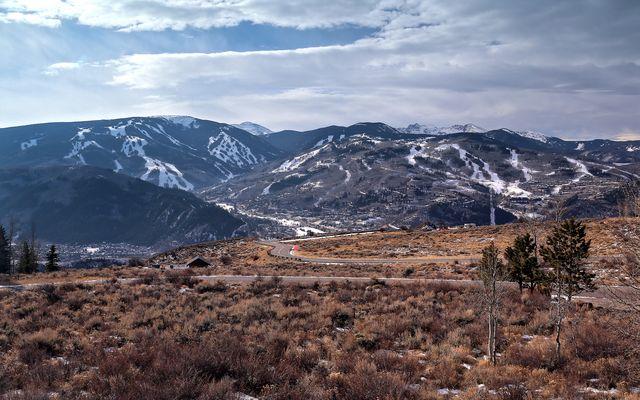 75 Mountain Sage - photo 29