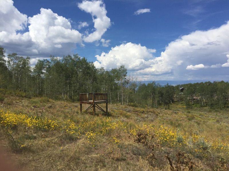 552 Gore Cordillera, CO 81632