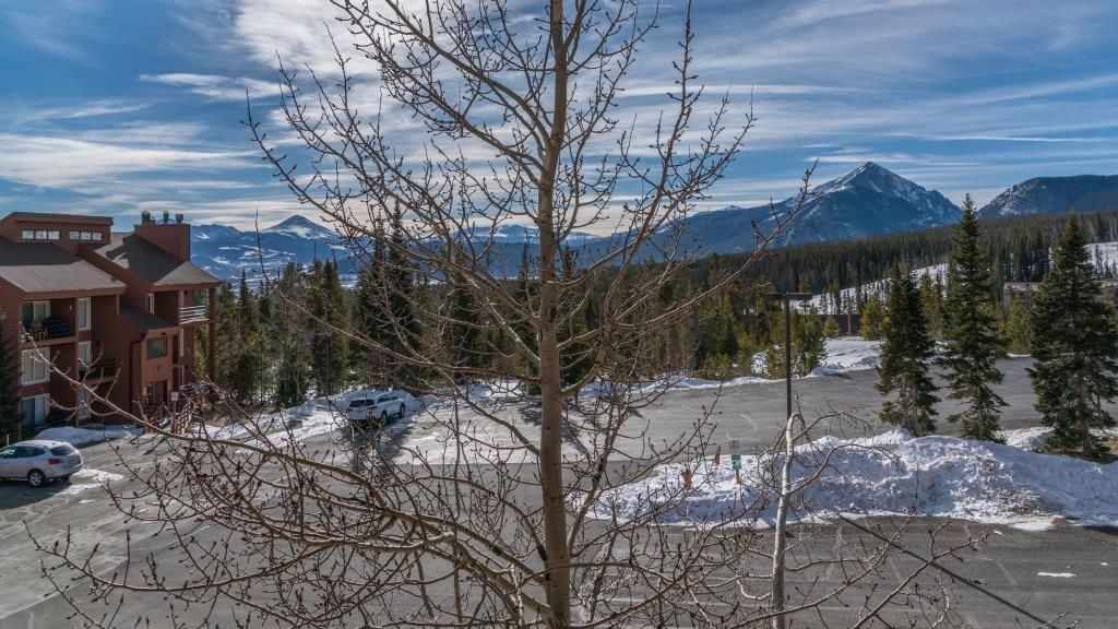 91200 Ryan Gulch ROAD # 223 SILVERTHORNE, Colorado 80498