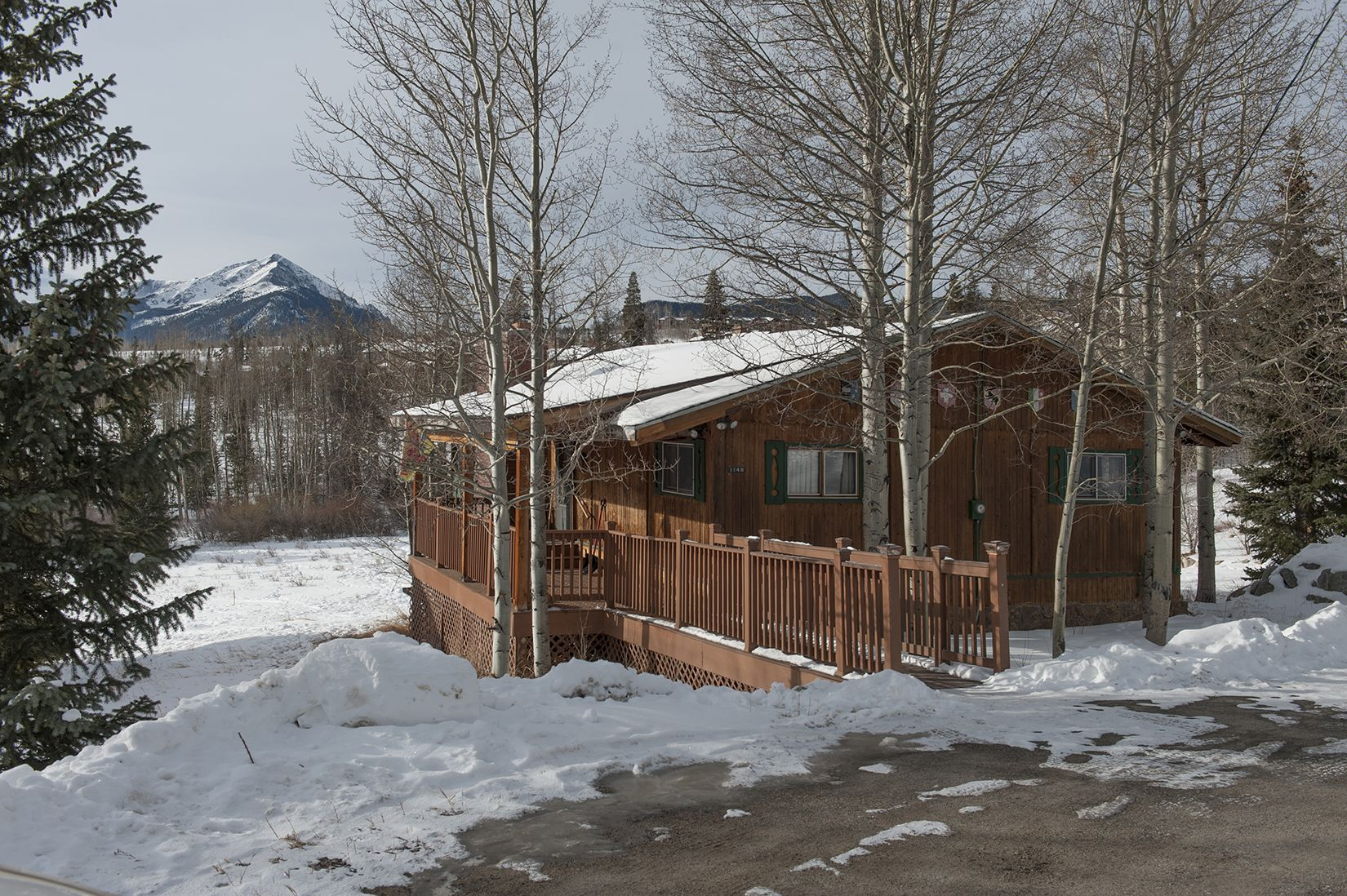 1148 Royal Buffalo DRIVE SILVERTHORNE, Colorado 80498
