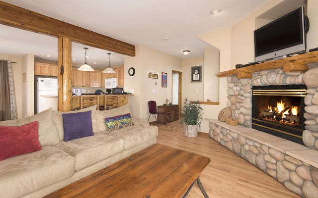 37 Skyline DRIVE # 37 DILLON, Colorado 80435