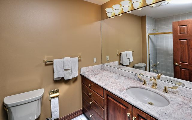 Elktrack Townhome # 11 - photo 13