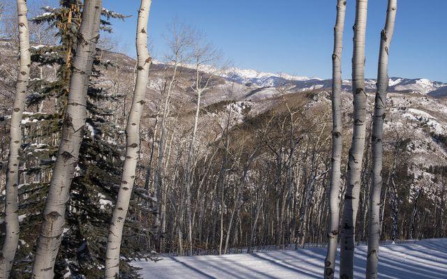 2083 Daybreak Ridge - photo 2