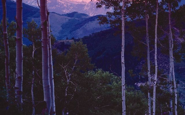 2083 Daybreak Ridge - photo 5