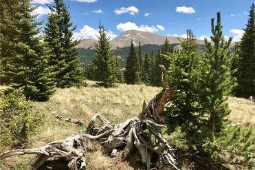 55 LAZY REX ROAD ALMA, Colorado 80420 - Image 1