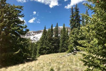 55 LAZY REX ROAD ALMA, Colorado - Image 3