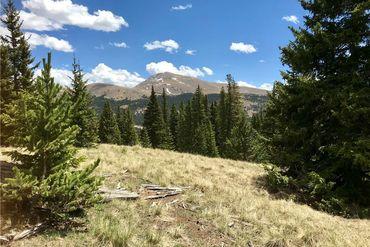 55 LAZY REX ROAD ALMA, Colorado - Image 4