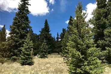 55 LAZY REX ROAD ALMA, Colorado - Image 7